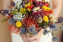 Kytice/Bouquets and Floral centerpieces