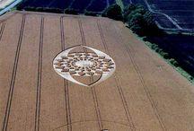 disegni sul grano