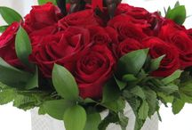 ARC Roses and Races