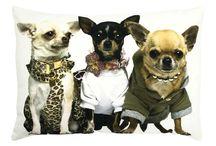 Cani e Gatti / Cuscini, tavolini vassoi, tappeti, zerbini con soggetti Cani e Gatti