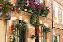 Flori,balcoane,ferestre