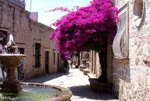 beauty streets
