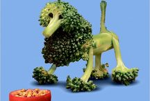 DOG FOOD ART / DOGS CANI CHIENS HUNDEN in FOOD ART