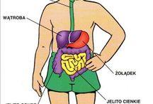 Mi Cuerpo