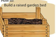 Gardening / by Amber Hatfield Grayson
