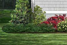 Foundation Planting Landscape Ideas