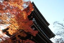 my kyoto
