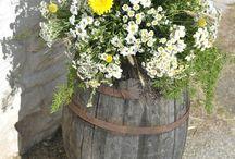 fiori esterno