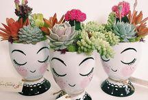 цветы и флористика