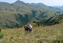 South-Africa / Impressions of our overland tours through South-Africa by African Travels