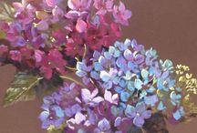 Hydrangea Paintings Nel Whatmore Artist