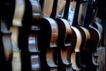 musica. / by Bekah Thompson