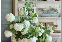 Cottage and Farmhouse Love / by Pamela Sommers