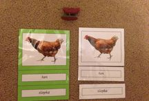 Matching farm animals (English & Slovak) / Montessori matching activity