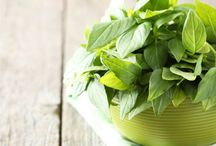 Herbal health tips