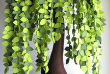 Tissus et plantes...