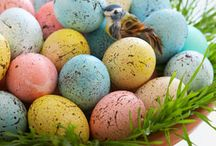 Spring Into Spring / All things Spring!  Flowers, pastels, Easter, bunnies, eggs and on...