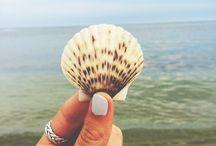 Beach ⚓️