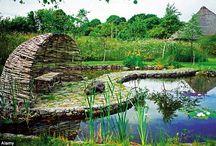Paysage de mon coeur / Inspiration nature, paysage, création, déploiement de la beauté de la terre