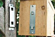 Birdie Homes