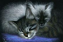 Meow...♥! / by Janis Lynn