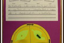 Kindergarten Science / by Jan StClair