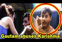Bigg Boss 8 29th September 2014 Episode | Gautam ABUSES Karishma on national television!