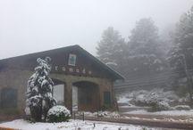 Neve em Gramado / Imagens de Gramado coberta de neve - 27/08/2013