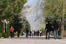 Üniversitesi Yaşam / Üniversitesi Yaşam