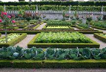 горизонтальный огород французский стиль