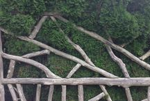 Trees in Art Form / Cedar fence around the maze garden at Mohonk