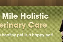 Wyoming Veterinarians Who Practice One or More Modalities in Holistic and Integrative Veterinary / http://www.bestcatanddognutrition.com/roger-biduk/list-of-900-u-s-holistic-integrative-veterinarians/