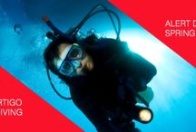 Alert Diver Spring 2015 Artricles
