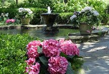Yard & Garden / by Jasmine