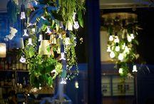 Plumen és Boskke dekoratív élő világítás
