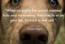 doggy quotes