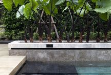 Pflanzen Thailand