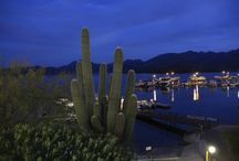 Saguaro Lake / The Desert Belle on Saguaro Lake located in Tonto National Forest!