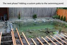 Natural Pool Ideas