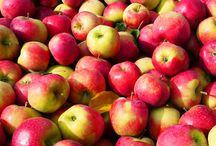 La Pomme Ariane