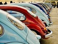 Volkswagen / by Chantal P