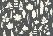 • Surface Patterns •
