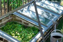 Jardin et potager / Jardin potager, potager en carré, jardinage, maraîchage, jardin bio, biodynamie, agroforesterie, permaculture, jardin fleuri