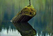 amazing natural / удивительная природа