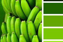 GREEN | ZELENÁ / Zelená bývá nejvíce spojována s přírodou. Barva fyziologické a psychologické rovnováhy, která vytváří příjemné, uklidňující a nerušivé prostředí s jistotou, svěžestí a harmonií. Je spíše studená až vlhká, což je však příjemně kompenzováno přírodními asociacemi, které navozuje... http://paletabarev.webnode.cz/green/