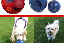 For Dogs! / This board includes interesting and innovative products for dogs of all shapes and sizes.
