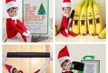 Elf on the Shelves