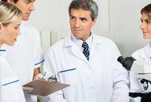 Healthcare Provider Database