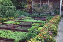 Magnifiques Jardins