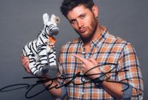 Jensen Ackles / by All Things Supernatural
